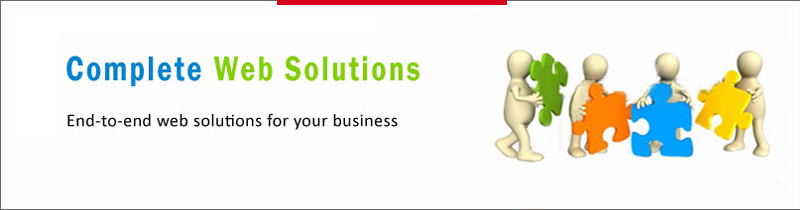 software solution company India, web application development solution, website designing & development solution, web portal development solution Ahmedabad