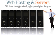 managed hosting, cloud hosting, cpanel web hosting, shared (virtual) hosting, dedicated web hosting, reseller web hosting, colocation web hosting, clustered hosting, grid hosting solution provider company in India